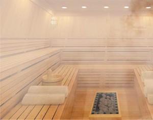 wie kann ich eine eigene sauna bauen neueinfo. Black Bedroom Furniture Sets. Home Design Ideas
